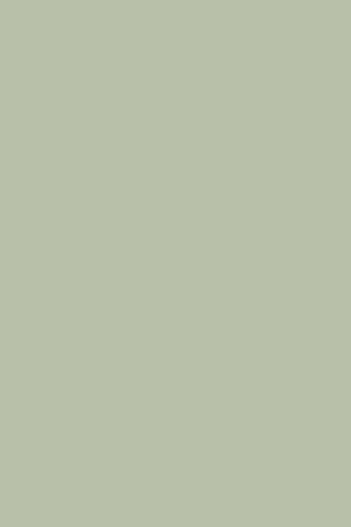 Pigeon100025