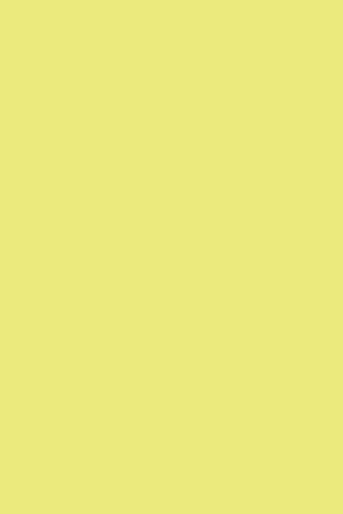 Yellowcake100279